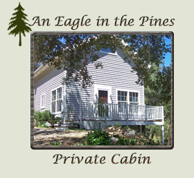 Eagle in the Pines Private Cabin